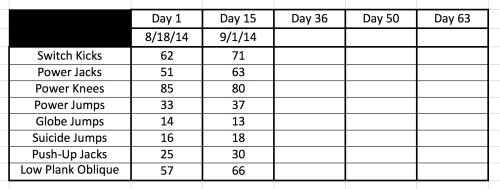 Insanity Fit Test 9-1-14